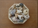 annedegruchy.co.uk image: Bowl of shells