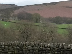 25 View back to North Lees Hall