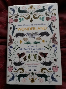 annedegruchy.co.uk image: book cover - wonderland